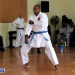 Sensei Roots Shiai 18, Karate Bermuda February 10 2013 (45)