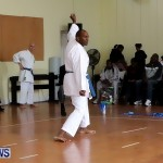 Sensei Roots Shiai 18, Karate Bermuda February 10 2013 (46)