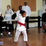 Sensei Roots Shiai 18, Karate Bermuda February 10 2013 (5)