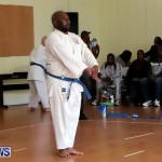 Sensei Roots Shiai 18, Karate Bermuda February 10 2013 (53)