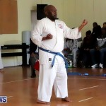 Sensei Roots Shiai 18, Karate Bermuda February 10 2013 (54)