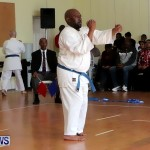 Sensei Roots Shiai 18, Karate Bermuda February 10 2013 (55)