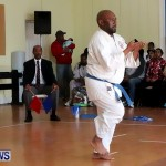 Sensei Roots Shiai 18, Karate Bermuda February 10 2013 (56)