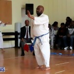 Sensei Roots Shiai 18, Karate Bermuda February 10 2013 (57)