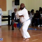 Sensei Roots Shiai 18, Karate Bermuda February 10 2013 (58)