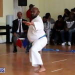 Sensei Roots Shiai 18, Karate Bermuda February 10 2013 (59)