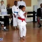 Sensei Roots Shiai 18, Karate Bermuda February 10 2013 (6)