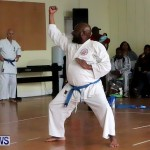 Sensei Roots Shiai 18, Karate Bermuda February 10 2013 (61)