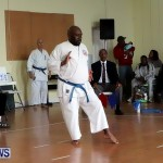 Sensei Roots Shiai 18, Karate Bermuda February 10 2013 (62)
