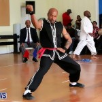 Sensei Roots Shiai 18, Karate Bermuda February 10 2013 (68)