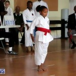 Sensei Roots Shiai 18, Karate Bermuda February 10 2013 (7)