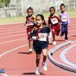 Telford Electric Magic Mile, Bermuda February 23 2013 (8)