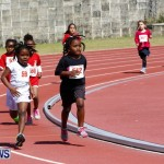 Telford Magic Mile, Bermuda February 23 2013 (12)