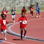 Telford Magic Mile, Bermuda February 23 2013 (14)