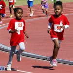 Telford Magic Mile, Bermuda February 23 2013 (15)