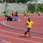 Telford Magic Mile, Bermuda February 23 2013 (2)