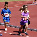 Telford Magic Mile, Bermuda February 23 2013 (20)