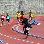 Telford Magic Mile, Bermuda February 23 2013 (3)