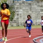 Telford Magic Mile, Bermuda February 23 2013 (33)