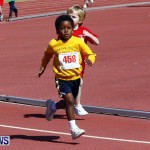 Telford Magic Mile, Bermuda February 23 2013 (4)