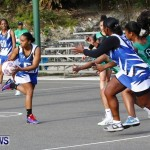 Womens Netball, Bermuda February 23 2013 (10)