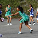 Womens Netball, Bermuda February 23 2013 (11)