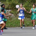 Womens Netball, Bermuda February 23 2013 (12)