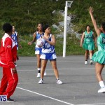 Womens Netball, Bermuda February 23 2013 (13)