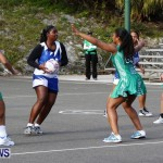 Womens Netball, Bermuda February 23 2013 (14)