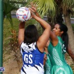 Womens Netball, Bermuda February 23 2013 (15)
