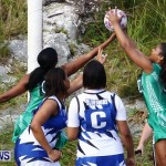 Womens Netball, Bermuda February 23 2013 (16)
