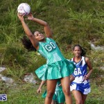 Womens Netball, Bermuda February 23 2013 (17)