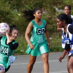 Womens Netball, Bermuda February 23 2013 (18)