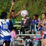 Womens Netball, Bermuda February 23 2013 (19)