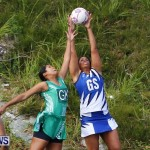 Womens Netball, Bermuda February 23 2013 (21)