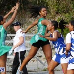 Womens Netball, Bermuda February 23 2013 (22)