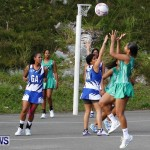 Womens Netball, Bermuda February 23 2013 (25)