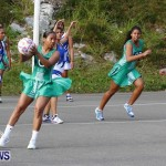 Womens Netball, Bermuda February 23 2013 (26)