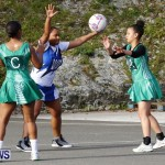 Womens Netball, Bermuda February 23 2013 (3)