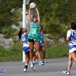 Womens Netball, Bermuda February 23 2013 (30)