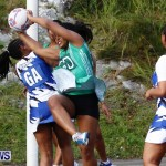 Womens Netball, Bermuda February 23 2013 (31)