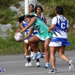 Womens Netball, Bermuda February 23 2013 (32)