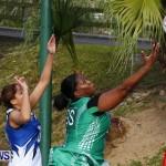 Womens Netball, Bermuda February 23 2013 (35)