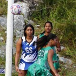 Womens Netball, Bermuda February 23 2013 (36)