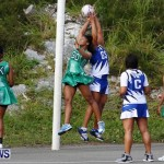 Womens Netball, Bermuda February 23 2013 (37)