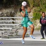 Womens Netball, Bermuda February 23 2013 (38)