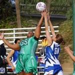 Womens Netball, Bermuda February 23 2013 (39)