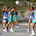 Womens Netball, Bermuda February 23 2013 (4)