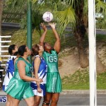 Womens Netball, Bermuda February 23 2013 (41)