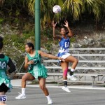 Womens Netball, Bermuda February 23 2013 (42)